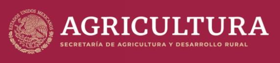 Logo Secretaria de Agricultura